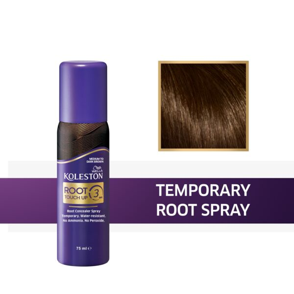 koleston root touch up 3 spray skouro kastano 75ml